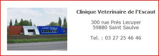 clinique1.jpg